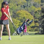 Bears golf stays unbeaten