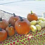 Farmer's market vendor meeting scheduled