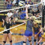 Lady Hounds sweep S. Stokes