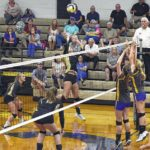 Central sweeps volleyball twinbill