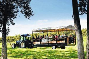 Agritourism workshop planned