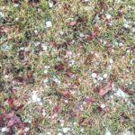 Quarter-sized hail hits area