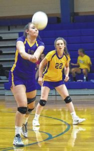 Lady Hounds take two straight wins